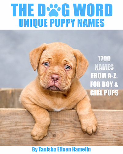 The Dog Word Unique Puppy Names cover